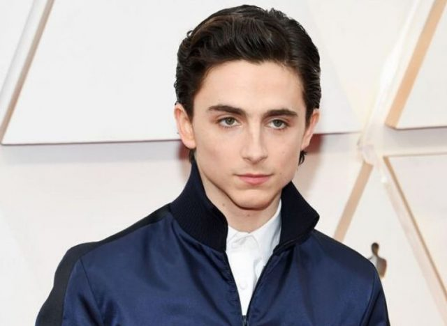 Timothée Chalamet Bio, Awards and Nominations, Age, Height, Girlfriend