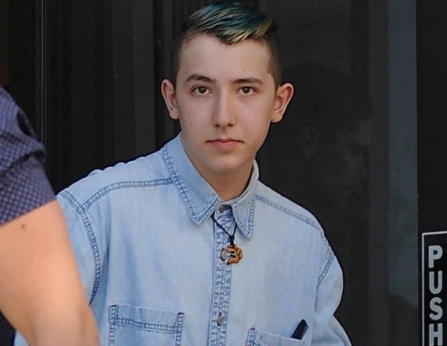 Who Is Frankie Jonas? Age, Height, Net Worth, Girlfriend, Where Is He Now?